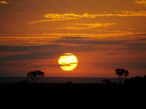 foto di tramonto tramonto tramonto magico nella savana Kenia